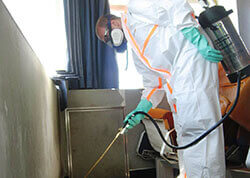 Control de plagas fumigacion