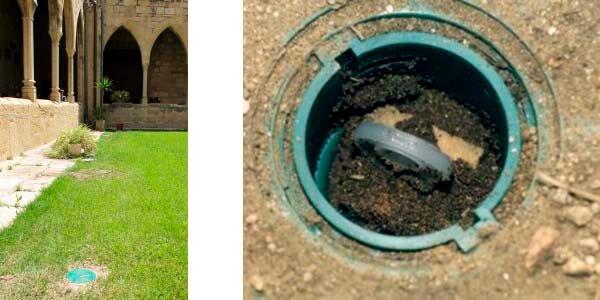 Tratamiento y control de termitas