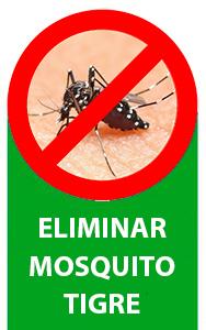 Eliminar mosquito tigre